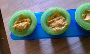 Broccoli, Cauliflower, Carrot puree frozen in cups